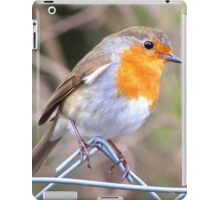 Robin Perching On Wire Fence iPad Case/Skin