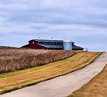 The Road to the Barn by Brian Gaynor
