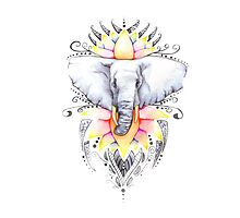 Elephant & Lotus Photographic Print