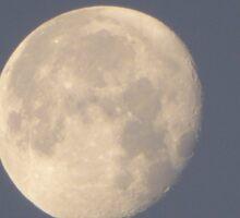 Mystical Daytime Moon Sticker