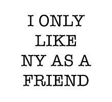 I Love NY/I Heart NY parody <3 Photographic Print