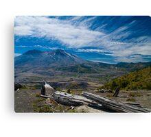 Mt St Helens Fallen Tree Canvas Print