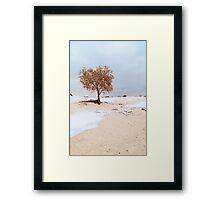 White Sands Lone Tree Framed Print