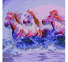 Horses at the beach Photographic Print
