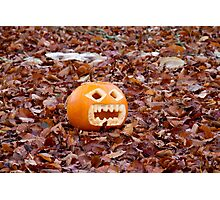 Pumpkin and Beech Leaves Photographic Print