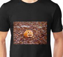 Pumpkin and Beech Leaves Unisex T-Shirt