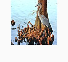 Blue Heron in Afternoon Sun Unisex T-Shirt