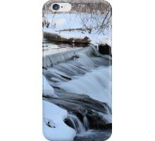 Winter At Harriman Park iPhone Case/Skin