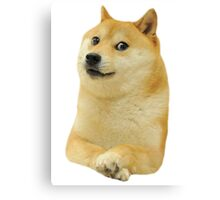 Doge design. Canvas Print