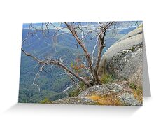 Gum and Granite Greeting Card