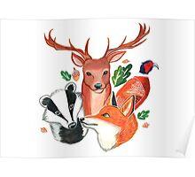 British Wildlife  Poster