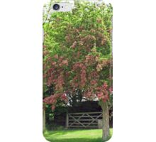 Tree with Pretty Pink Blossoms iPhone Case/Skin
