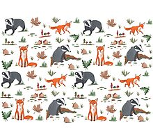 Fox and Badger Pattern  Photographic Print