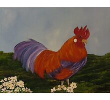 Blazing Rooster Photographic Print