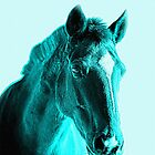 Equine Beauty in Blue...Turquoise World by Shellibean1162