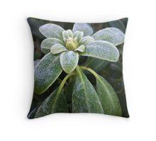 Winter freshness Throw Pillow