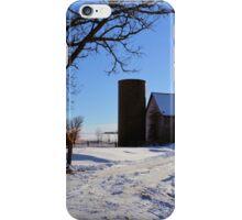 Birch Winter Rise iPhone Case/Skin