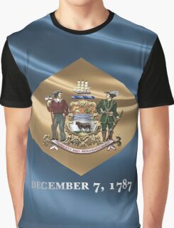 Delaware Coat of Arms over State Flag Graphic T-Shirt