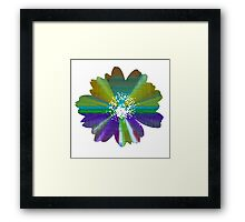 Flower 21 Framed Print
