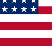American flag New Mexico outline Sticker