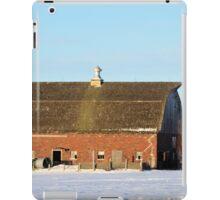Franklin Brick iPad Case/Skin