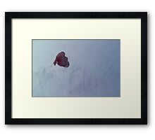 Misty difference Framed Print
