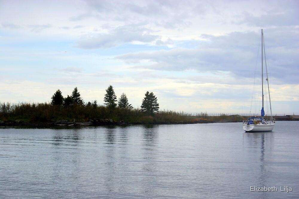 Sailboat On Lake Superior by Elizabeth  Lilja