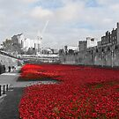 A Sea of Red by Christopher Wardle-Cousins