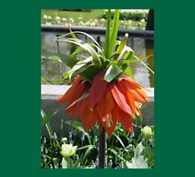 Orange Crown Imperial - Very Dutch! Womens Fitted T-Shirt