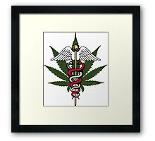nature's medicini medical marijuana Framed Print