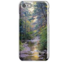 Paint Creek, Tennessee iPhone Case/Skin