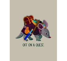 Off on a Quest Photographic Print