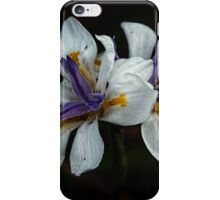 Newly opened flowers Leith Park Victoria 20151120 0726   iPhone Case/Skin