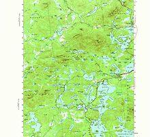 New York NY Saint Regis 129308 1955 62500 by wetdryvac