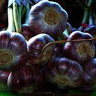 """Garlic"" by Elfriede Fulda"