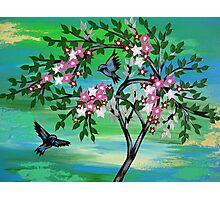 Sakura Freshness Photographic Print