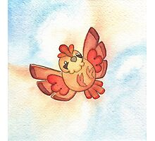 Watercolor Magestic Soaring Through the Sky PIDGEY  Photographic Print