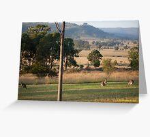 Rural Scene - Hunter Valley, NSW Greeting Card