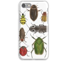 Assorted Beetles iPhone Case/Skin