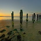 Old Jetty at the Dell by David  Hibberd