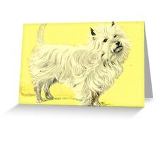 Fluffy White Cairn Terrier Dog Greeting Card