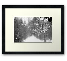 Wild lands of the North Framed Print