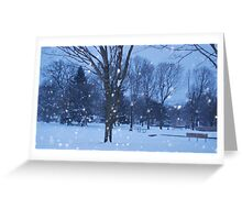 Park in the Snow Greeting Card
