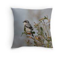 Loggerhead Shrike Throw Pillow