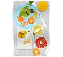 Winter Citrus Poster