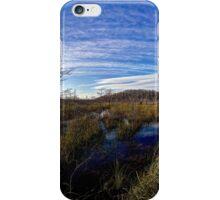 Everglades Expanse iPhone Case/Skin