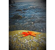 Edge Of Pacific- Vancouver Photographic Print