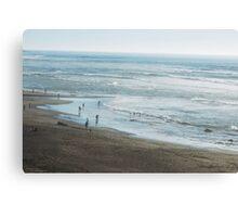 Bodega Bay Beach Canvas Print