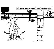 Zoo Humour - Cartoon 0017 Photographic Print