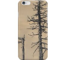 Gastineau Meadows Snags #2 iPhone Case/Skin